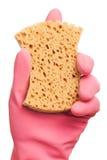 Рука в розовой перчатке держа губку Стоковые Изображения