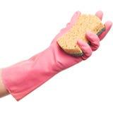 Рука в розовой перчатке держа губку Стоковые Фотографии RF