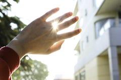 Рука в солнце стоковые фотографии rf