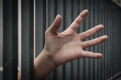Рука в тюрьме стоковые фотографии rf