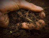 рука грязи Стоковые Изображения RF
