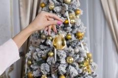 Рука девушки держа игрушку рождества, шарик, дерево с орнаментами Стоковая Фотография