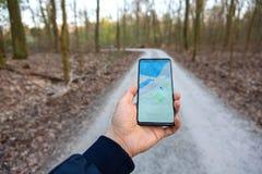 Рука держа показывать мобильного телефона gps составляет карту в предпосылке леса стоковое изображение