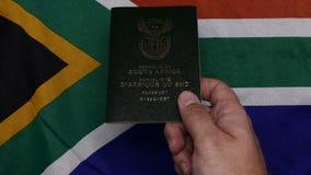 Рука держа южно-африканский паспорт на флаге SA сток-видео