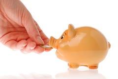 рука евро банкнотов национального банка piggy Стоковое Изображение