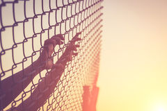 Рука держа дальше загородку звена цепи Стоковые Фото