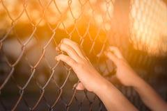 Рука держа дальше загородку звена цепи Стоковое Изображение