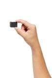 Рука держа изолят карточки SD на белизне Стоковые Фото