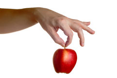 Рука держа красное яблоко сверху изолированный Стоковые Изображения RF
