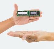 Рука держа обломок IC Стоковые Изображения RF