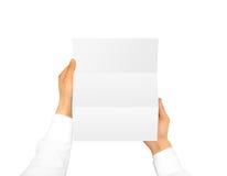 Рука держа пустую листовку буклета брошюры Стоковое Изображение RF