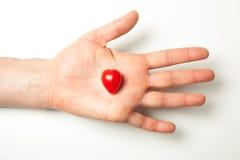 Рука держа томат сердца форменный Стоковая Фотография RF