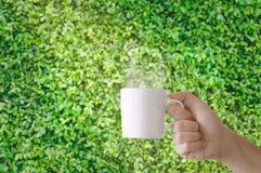 Рука держа чашку кофе стоковые изображения rf