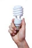 Рука держа электрическую лампочку Стоковые Фото