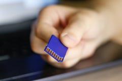 Рука держит карту памяти SD bluets стоковые фотографии rf