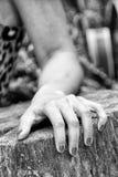 Рука женщины в черно-белом Стоковые Изображения RF