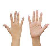 Рука женщины делая знак Стоковые Фотографии RF