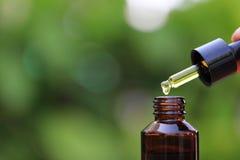 Рука женщины держа эфирное масло или витамин C падая к бутылке на естественной зеленой предпосылке, косметической пипетке и конце стоковые изображения rf