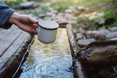 Рука женщины держит кружку ключевой воды в каникулах приключения концепции леса активных на открытом воздухе стоковая фотография