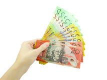 Рука женщины держа деньги Стоковое Изображение