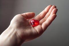 Рука женщины держа малое пластичное сердце Стоковая Фотография