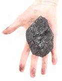 Рука женщины держа шишку угля на белой предпосылке Стоковая Фотография RF