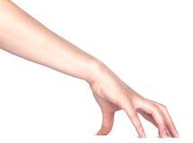 Рука женщины касатьясь или хватая   Стоковые Фотографии RF
