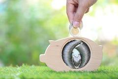 Рука женщины кладя монетку в древесину копилки на естественную зеленую предпосылку, сохраняет деньги для подготавливает в будущем стоковая фотография