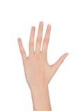 Рука женщины красоты над белизной Стоковое Изображение