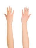 Рука женщины красоты над белизной Стоковые Изображения RF