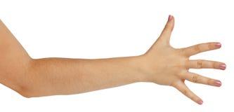 Рука женщины показывая 5 перстов Стоковое Изображение