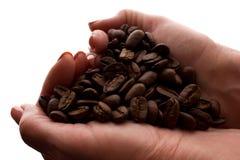 Рука женщины пригорошня кофейных зерен - силуэт стоковые изображения rf