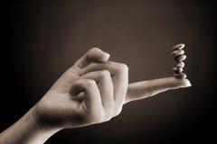 рука женщины счетчика фасоли Стоковые Фотографии RF