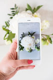 Рука женщины фотографируя белые цветки с камерой smartphone Стоковые Фото