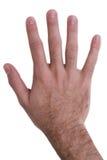 рука жестов Стоковая Фотография