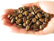 рука зерен кофе Стоковое Изображение RF