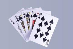 Рука играя карточек королевского притока покера Стоковые Фотографии RF