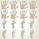 Рука и ноги собрания Стоковые Изображения