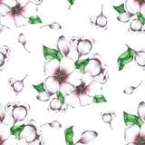 Рука картины цветка безшовная покрашенная в акварели иллюстрация вектора