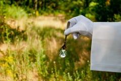 Рука кельнера в белой перчатке держит ложку металла на открытом воздухе стоковая фотография