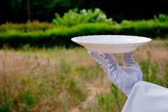 Рука кельнера в белой перчатке держит плиту в природе стоковое изображение rf
