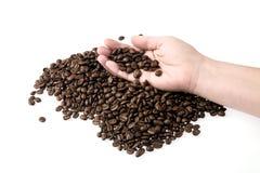 рука кофе фасолей Стоковое Фото