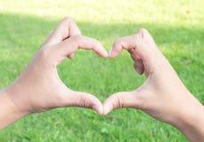 Рука крупного плана делает сформированное сердце на зеленой траве с светом солнца для Стоковая Фотография RF