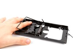 рука людей мыши поглощенная ловушкой стоковые изображения rf