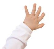 Рука младенца стоковое фото