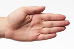 Рука молодой женщины стоковое фото