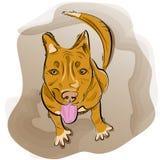 Рука нарисованная красной собаки иллюстрация штока