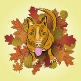 Рука нарисованная красной собаки иллюстрация вектора