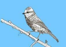 рука нарисованная птицей Стоковое Изображение RF