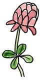 Рука нарисованное цветение клевера 4 лист Стоковое Изображение